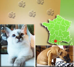 alimentation animaux Toulouse